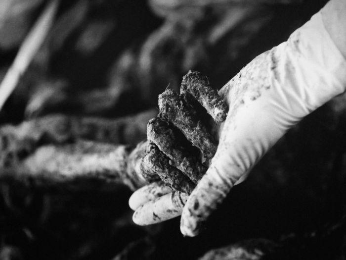 Fotografía de la excavación de las fosas comunes. Fotografía de la exposición del genocidio de Srebrenica en Sarajevo