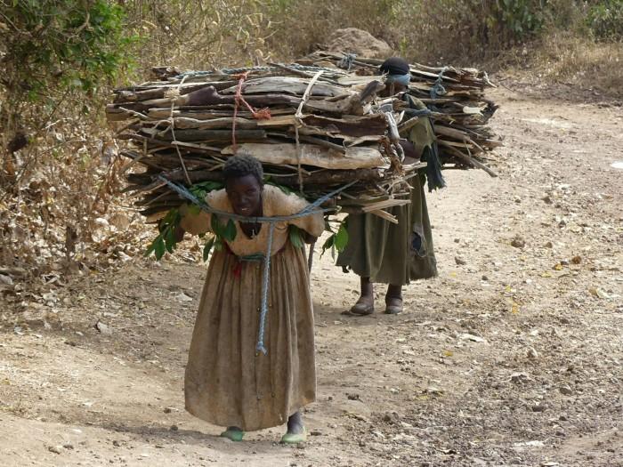 Mujeres cargadas como mulas en el lago Tana